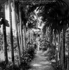 Entrance to a Filipino home, Santa Ana, Manila, Philippines, 1899 Philippines Culture, Manila Philippines, Filipiniana, Library Of Congress, Vintage Pictures, Filipino, Old Photos, Entrance, York