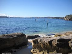 Nielsen Park is located on the foreshore of Sydney Harbour, at Vaucluse in the eastern suburbs. The parkland is stunning with giant moreton bay figs, a perfect spot for a picnic. The beach offers calm waters, with a shark proof net in summer. Parks In Sydney, Shark, Beach, Water, Summer, Outdoor, Gripe Water, Outdoors, Summer Time