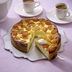 Unser beliebtes Rezept für Aprikosen-Käsekuchen und mehr als 55.000 weitere kostenlose Rezepte auf LECKER.de.
