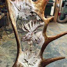 Sculpture sur panache - Antler carving