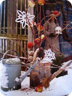 a bird christmas | Flickr – Compartilhamento de fotos!