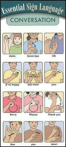 "Essential ASL Sign Language - for SASL (South African SL) please ignore the signs for ""good-bye"", ""thank you"" and ""later"", the other signs are the same. Also the ASL sign for ""please"" is the SASL sign for ""pleasure"" Sign Language Words, Sign Language Alphabet, Learn Sign Language, American Sign Language, Sign Language Basics, English Sign Language, Australian Sign Language, Simple Sign Language, Spanish Language"