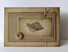Sponged Seashell