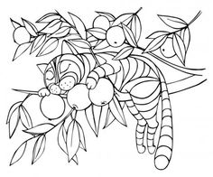 Fantasy cat sleeping on an Apple tree Sleeping Drawing, Sleeping Kitten, Tree Outline, Kittens Cutest Baby, Doodle Characters, Cat Sketch, Online Coloring Pages, Cat Wallpaper, Cat Crafts
