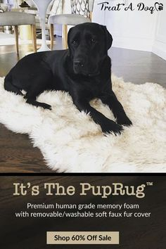 The orthopedic PupRug was designed to provide our furry friends with the ultimate place to rest while blending seamlessly into homes with its modern and luxurious design. Unlike other pet beds, the PupRug looks natural as part of your home decor Covered i Cute Puppies, Cute Dogs, Dogs And Puppies, Doggies, Hamsters, Cute Baby Animals, Funny Animals, Training Your Dog, Training Collar