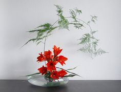 Ikebana - red flowers. Touches my heart.