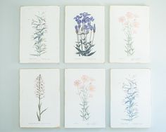 Create a gallery wall with Magnolia's Unframed Floral Prints ($52 each, four styles available).