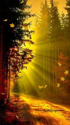 Que tudo na sua vida seja claro como a Luz do Sol!