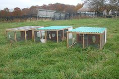 Skyview Acres' rabbits are raised on the ground, on fresh pasture daily. We studied a lot of chicken tractors, checked out Polyface's and N...