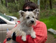 Col. Potter Cairn Rescue Network Post Adoption Blog: Wright fits Right in!  Another happy ending!!!