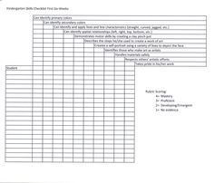 This is a skills checklist/rubric I created to assess my