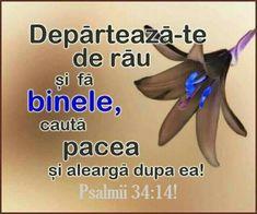 Spirituality, Bible, Spiritual