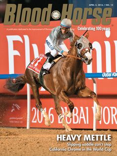 Issue 13, April 2, 2016. Heavy Mettle: Slipping saddle can't stop California Chrome in the World Cup. Also in this issue: Full siblings of Triple Crown winners, Chuck Zacney's Cash is King partnership, and more. Buy this issue: http://shop.bloodhorse.com/collections/current-issue/products/blood-horse-april-2-2016-print