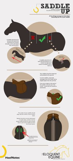 SADDLE UP – A HoofNotes Infographic  A few things to keep in mind when assessing the fit of your saddle!  Download the full JPEG here: http://wp.me/p3ER8w-cA