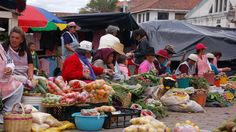 Ecuador Travel Information and Travel Guide - Lonely Planet