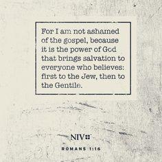 NIV Verse of the Day: Romans 1:18