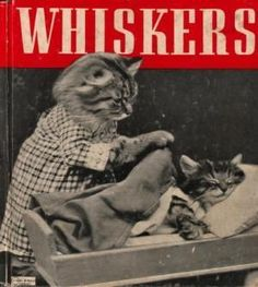 Harry Whittier Deep inside we always knew it: even kittens can be creepy. I Love Cats, Crazy Cats, Cool Cats, Cat Whiskers, Neko, Vintage Cat, Cats And Kittens, Funny Kittens, Cat Art