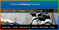 Premium Company Template . The perfect template for a business.  Standard features