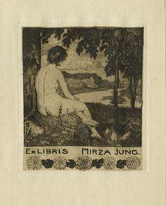 Mirza Jung