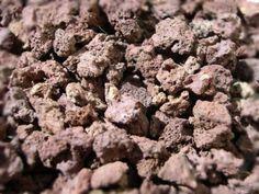 Utilisations de la pouzzolane au jardin et pour les plantes en pot : drainage, paillage, couvre-sol...