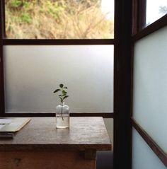 J'adore la luminosité de la pièce jumelée à l'intimité que confère le verre opaque. Très approprié pour une salle de bain. De plus, la verdure reflète bien la simplicité de la pièce.