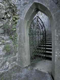 Thresholds:  A Gothic gate in County Mayo, Ireland.