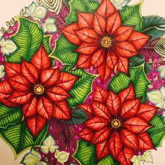 Johanna's Christmas Coloring Book- Red Poinsettias