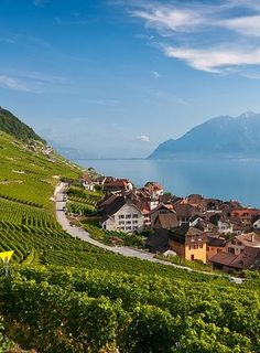 Epesses, Vaud, Switzerland: