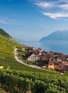 Epesses, Vaud, Switzerland: