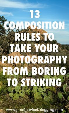 13 Composition Rules to Take Your Photography from Boring to Striking