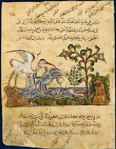 Kalila wa-Dimna Illustration of the Crab in Kalila wa-Dimna. Syrian manuscript. Bibliothèque nationale de France in Paris, MS arabe 3465, folio 57.