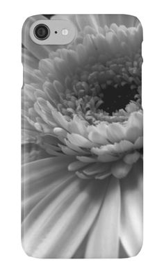Black and white gerbera daisy iPhone cases and skins by Catherine Maughan