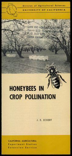 Honeybees In Crop Pollination, 1954  http://www.amazon.com/gp/product/B01N5GQEFO/ref=cm_sw_r_tw_myi?m=A3FJDCC1SFO8CE