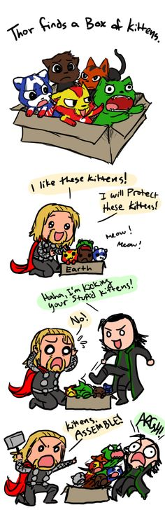 "Cute ""Avengers"" Fan Art Thor and Loki.and Avenger-kittensThor and Loki.and Avenger-kittens Marvel Jokes, Avengers Comics, Avengers Fan Art, The Avengers, Marvel Funny, Marvel Marvel, Funny Avengers, Loki Funny, Dc Memes"