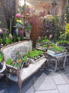 floral shop in Paris