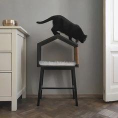 Pet Beds, Dog Bed, Cat Wall Furniture, Cat House Diy, Cat Scratching Post, Design Your Dream House, Cat Room, Home Design Decor, Cat Design