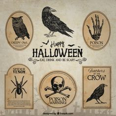 Hand drawn halloween badges Free Vector