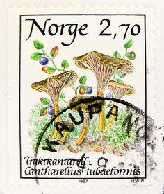 ♥ ◙ Norway, Postage Stamp. ◙