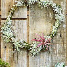 28 beautiful Christmas wreath ideas | Frosty | Sunset.com