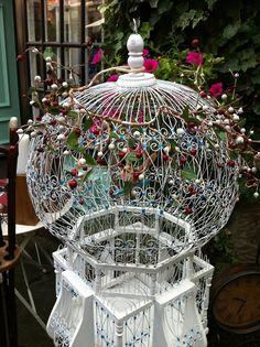 Beautiful birdcage