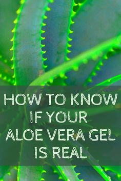 How To Know, Need To Know, Aloe Vera Gel, Skin Care, Room, Bedroom, Skincare Routine, Skincare, Rooms