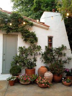 Small Container Garden