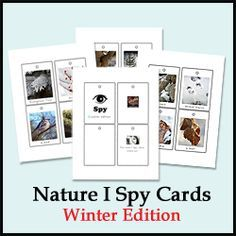 Winter Nature I Spy - would make a great outdoor activity/ additional activity for recess