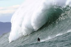 """""""FRANCE: A man surfs Belharra giant waves some two kilometers off coast of French basque country town of Urrugne"""" No Wave, Giant Waves, Big Waves, Large Waves, Ocean Waves, Harbin, Pictures Of The Week, Cool Pictures, Surfing"""