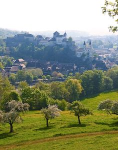 the foreground sure does remind me  of the Napa area!!  Aarburg, Aargau, Switzerland