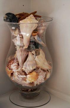seashells!...have had a vase full of seashells in my seashell /mermaid bathroom for years. Never get tired of it!