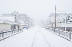 知恩院道   Flickr - Photo Sharing!
