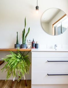 A boston fern and snake plant add a pop of colour to this all white bathroom. Photography by: Daniel Allen Kitchen On A Budget, Kitchen Living, Apartment Therapy, All White Bathroom, Installing Laminate Flooring, Industrial Style Lighting, Decoration Plante, Bathroom Plants, Types Of Flooring