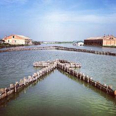 @soulplace Lavoriero per la pesca dell'anguilla by Turismo Emilia Romagna, via Flickr