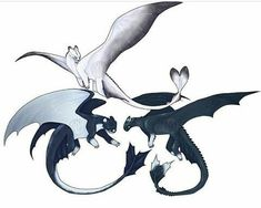 18 Best Ideas How To Train Your Dragon Drawings Toothless Night Fury Httyd Dragons, Cute Dragons, Mythical Creatures Art, Fantasy Creatures, Dragon Sketch, Dragon Drawings, Wings Of Fire Dragons, Night Fury, Toothless